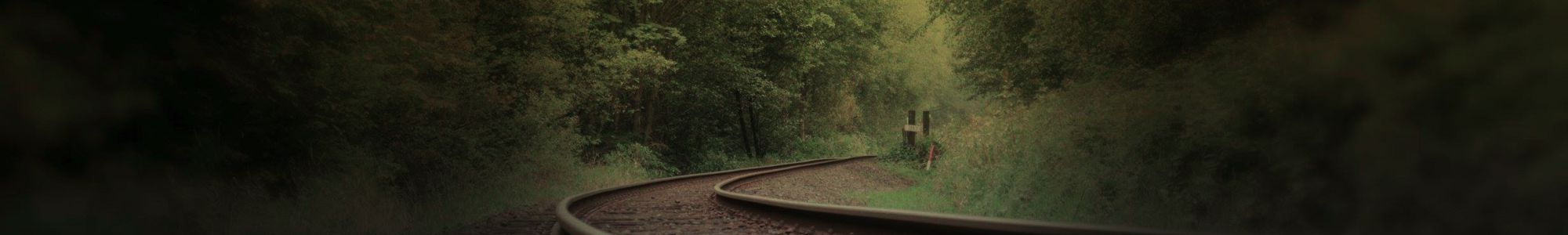 Rail track surrounded by trees